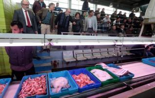 Inpulso sector pesquero
